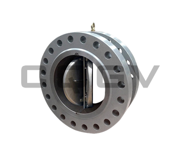 Double flap flange check valve
